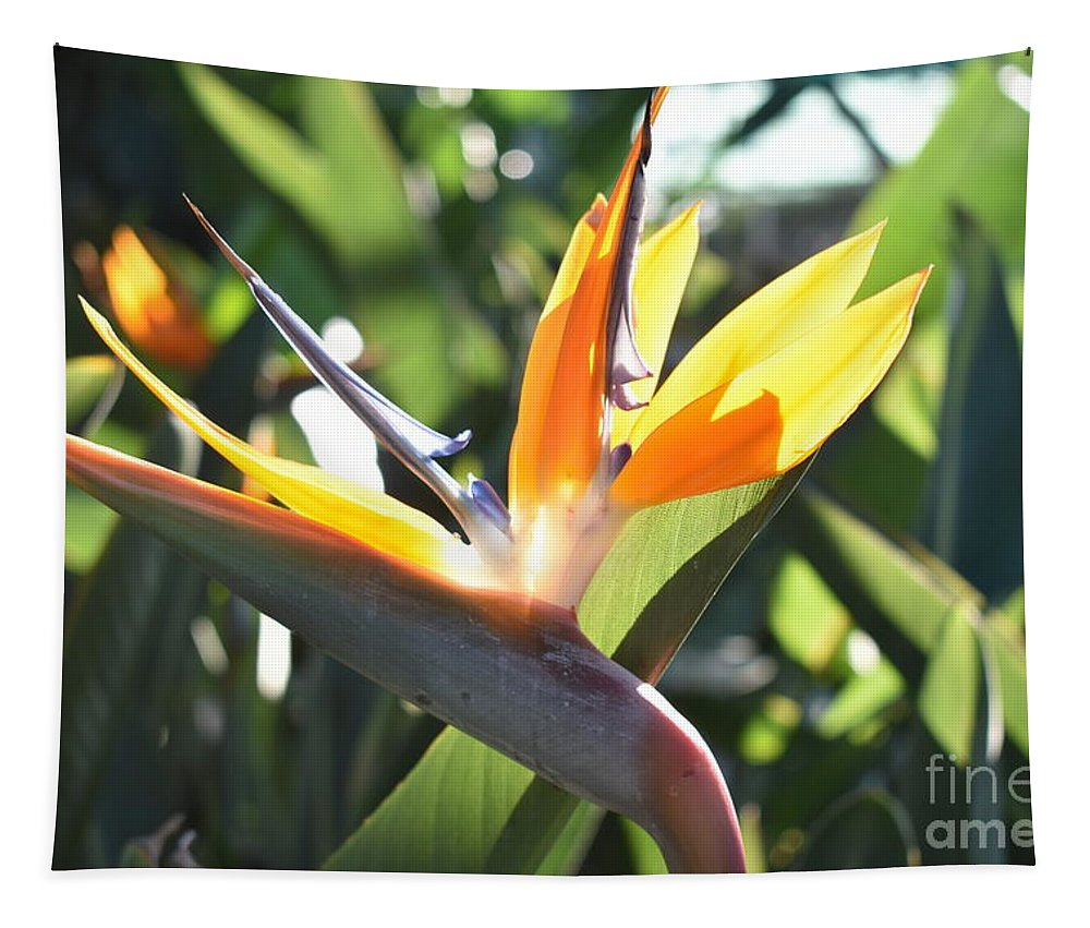 Bird Of Paradise Tapestry featuring the digital art Bird Of Paradise by Yenni Harrison