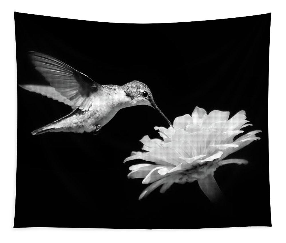 Black And White Tapestry featuring the photograph Black and White Hummingbird and Flower by Christina Rollo