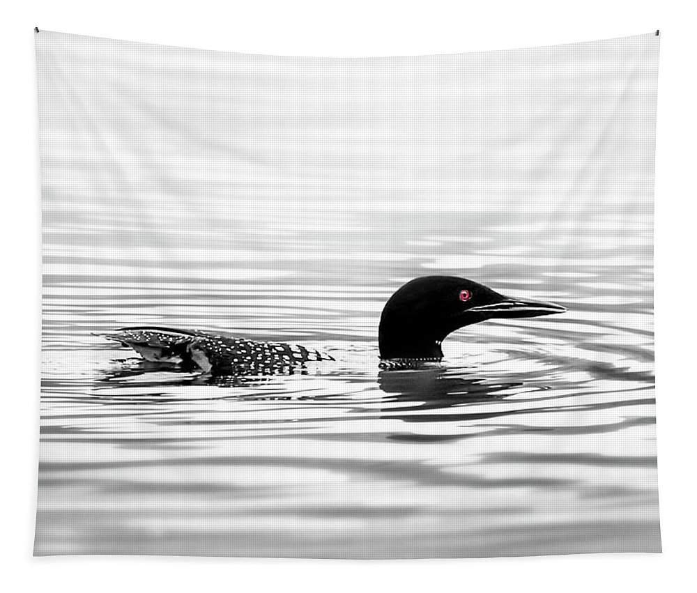 Loon Tapestry featuring the photograph Black And White Loon by Christina Rollo