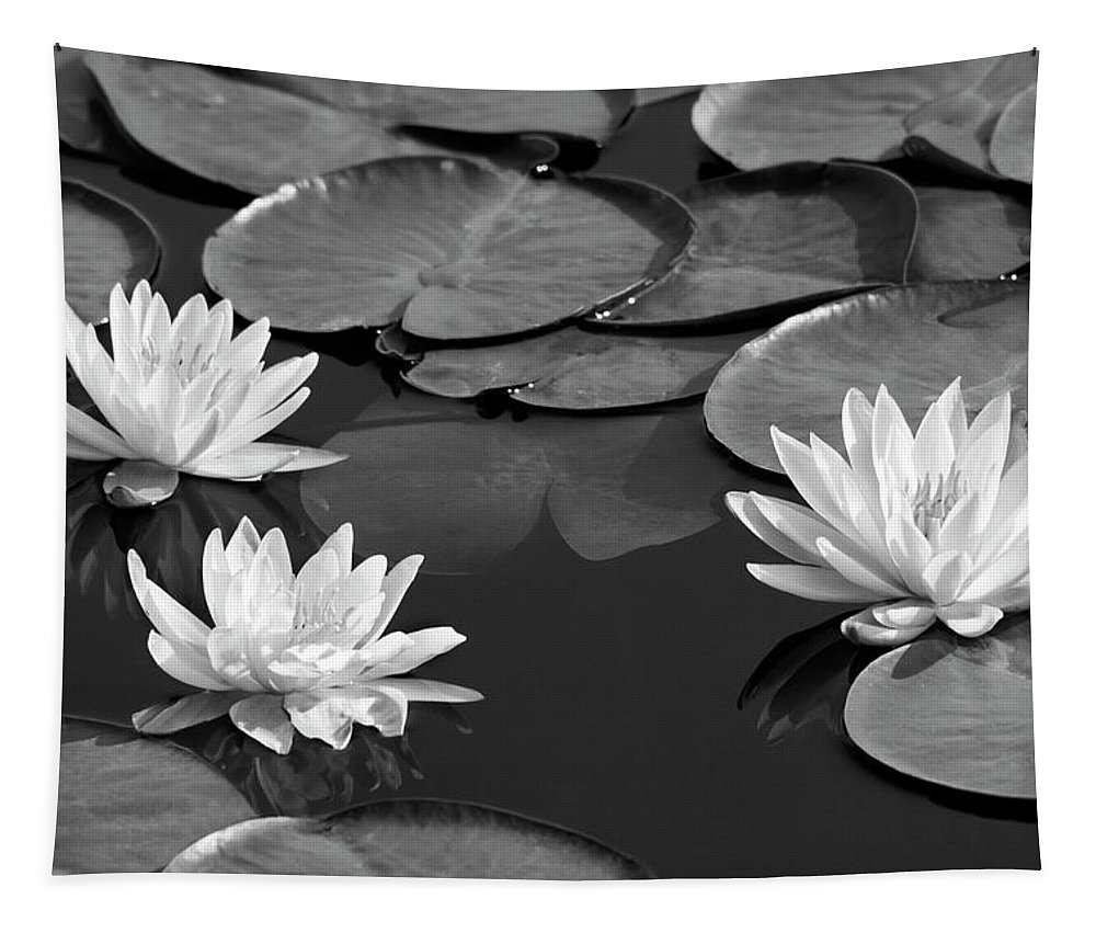 Black And White Tapestry featuring the photograph Black And White Water Lilies by Christina Rollo