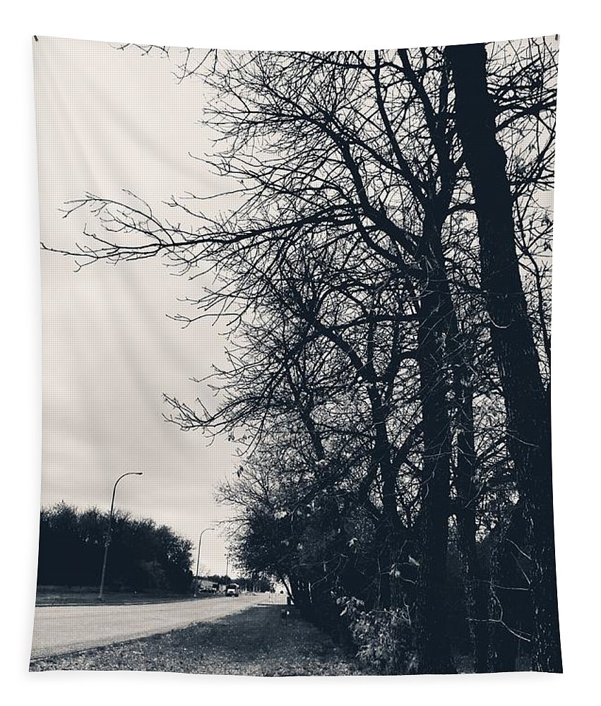 Bleak Trees Tapestry featuring the photograph Bleak, Barren Trees Lining A Vacant Street by Daniella Edington