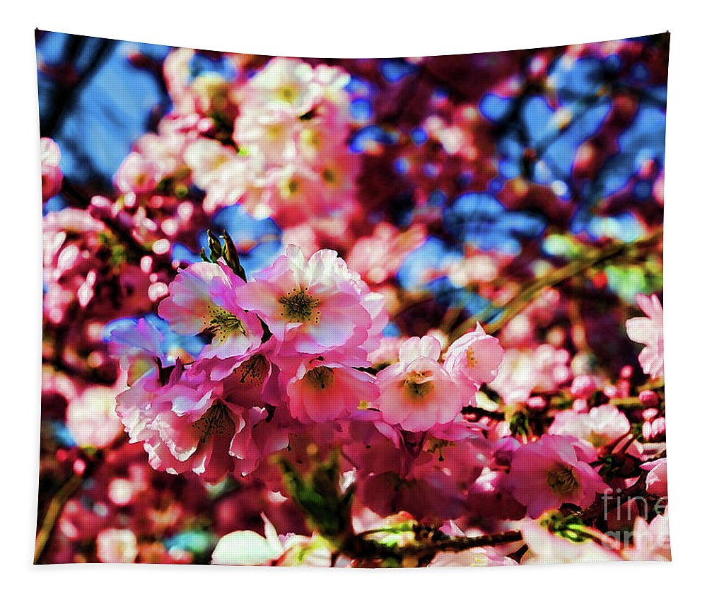 Paul Ward Tapestry featuring the photograph Cherry Blossoms 1 by Paul Ward