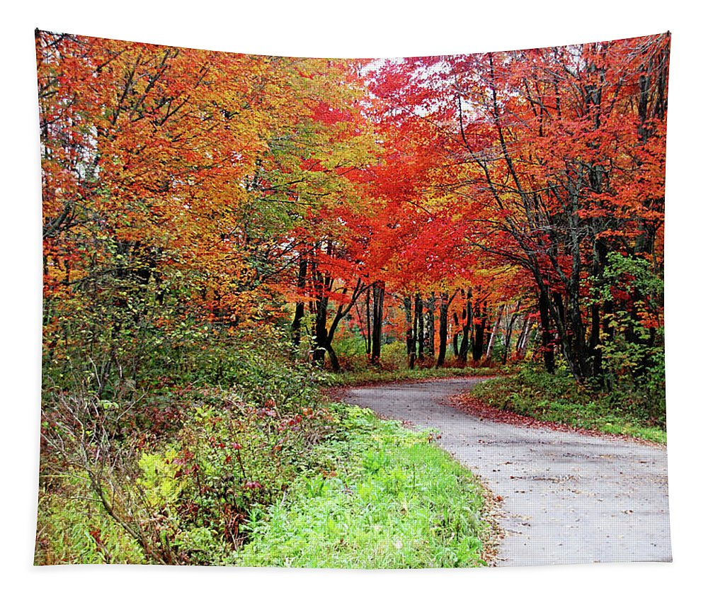Chikanishing Road Tapestry featuring the photograph Chikanishing Road In Fall by Debbie Oppermann