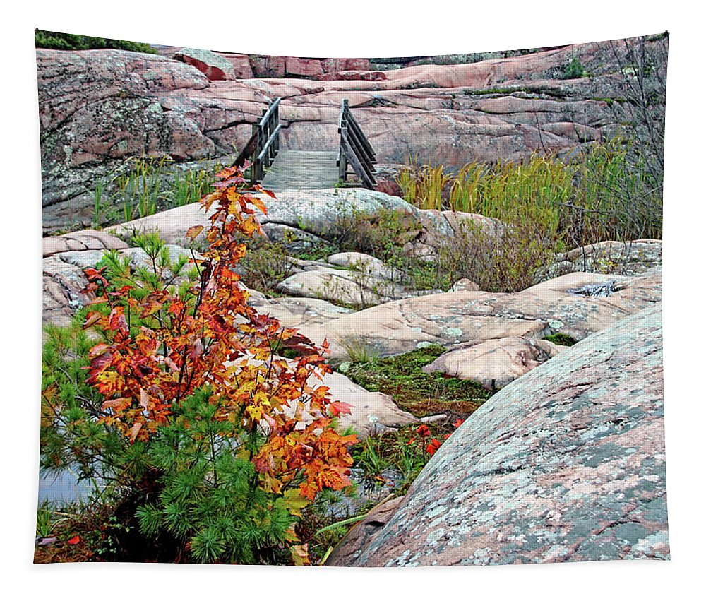 Chikanishing Trail Tapestry featuring the photograph Chikanishing Trail Boardwalk by Debbie Oppermann