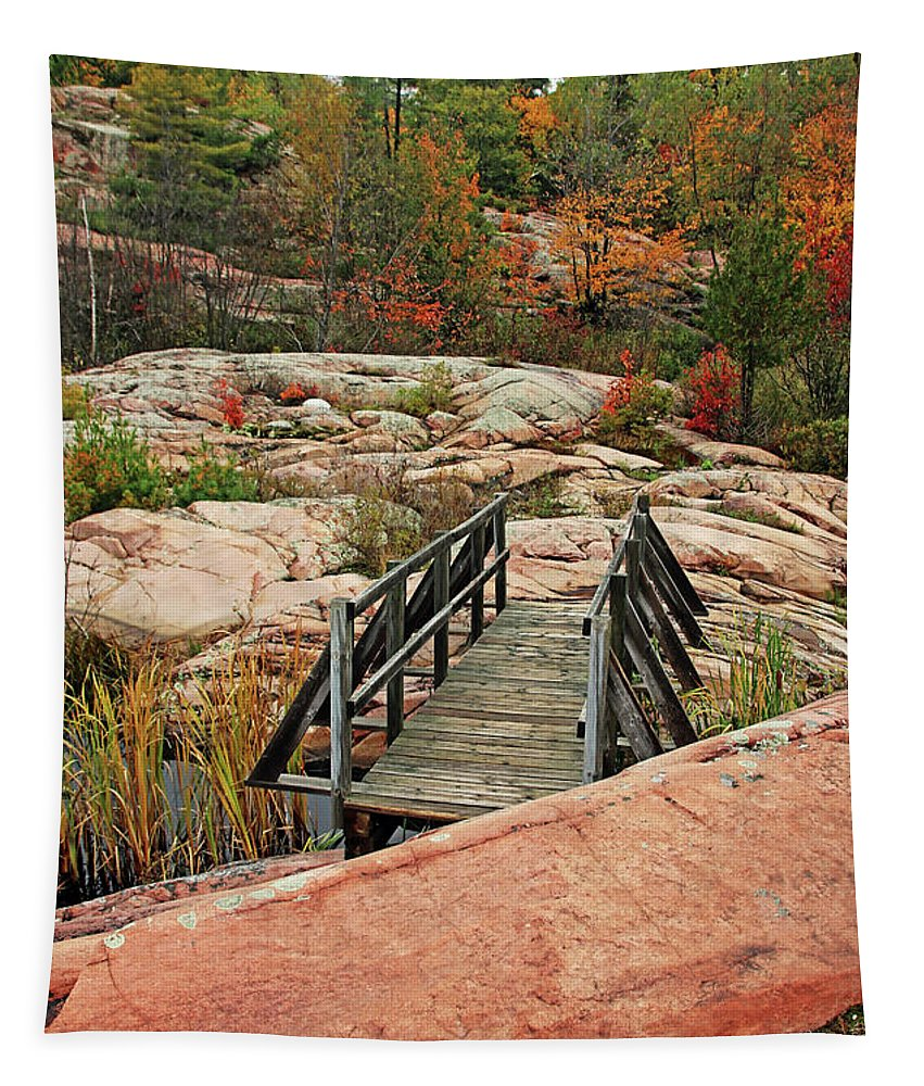 Chikanishing Trail Tapestry featuring the photograph Chikanishing Trail Boardwalk II by Debbie Oppermann