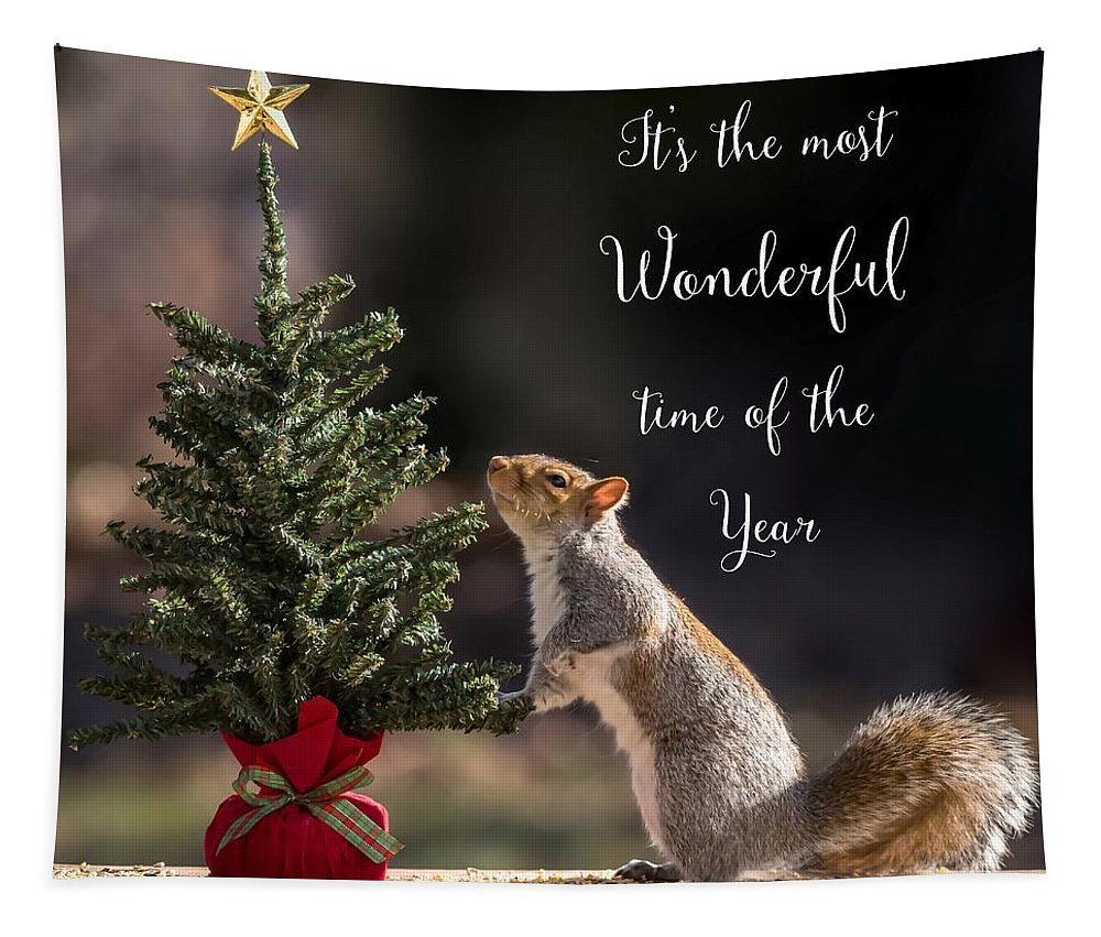 Terry D Photography Tapestry featuring the photograph Christmas Squirrel Most Wonderful Time Of The Year Square by Terry DeLuco