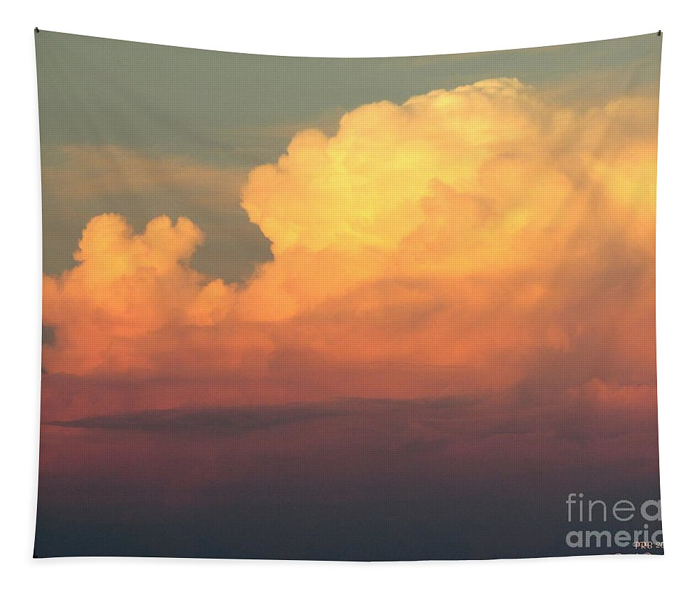 Galveston Tapestry featuring the photograph Clouds Over Pleasure Pier by Pamula Reeves-Barker