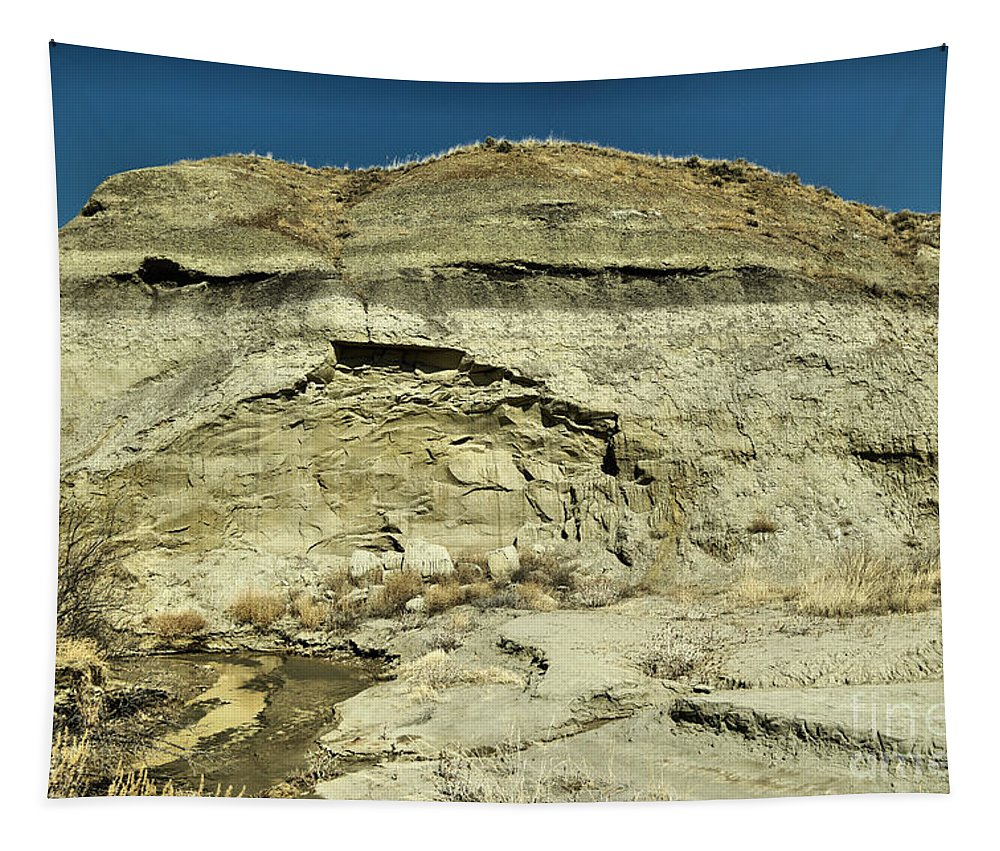 Landscape Tapestry featuring the photograph Coal Vein Makoshika State Park by Jeff Swan