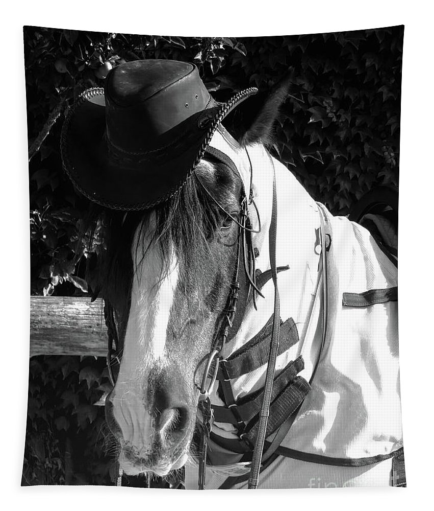 Gypsy Horse Tapestry featuring the tapestry - textile Cool Gypsy Horse by Elisabeth Lucas