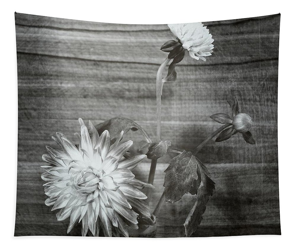 Square Tapestry featuring the photograph Dahlia Grouping by Michelle Calkins