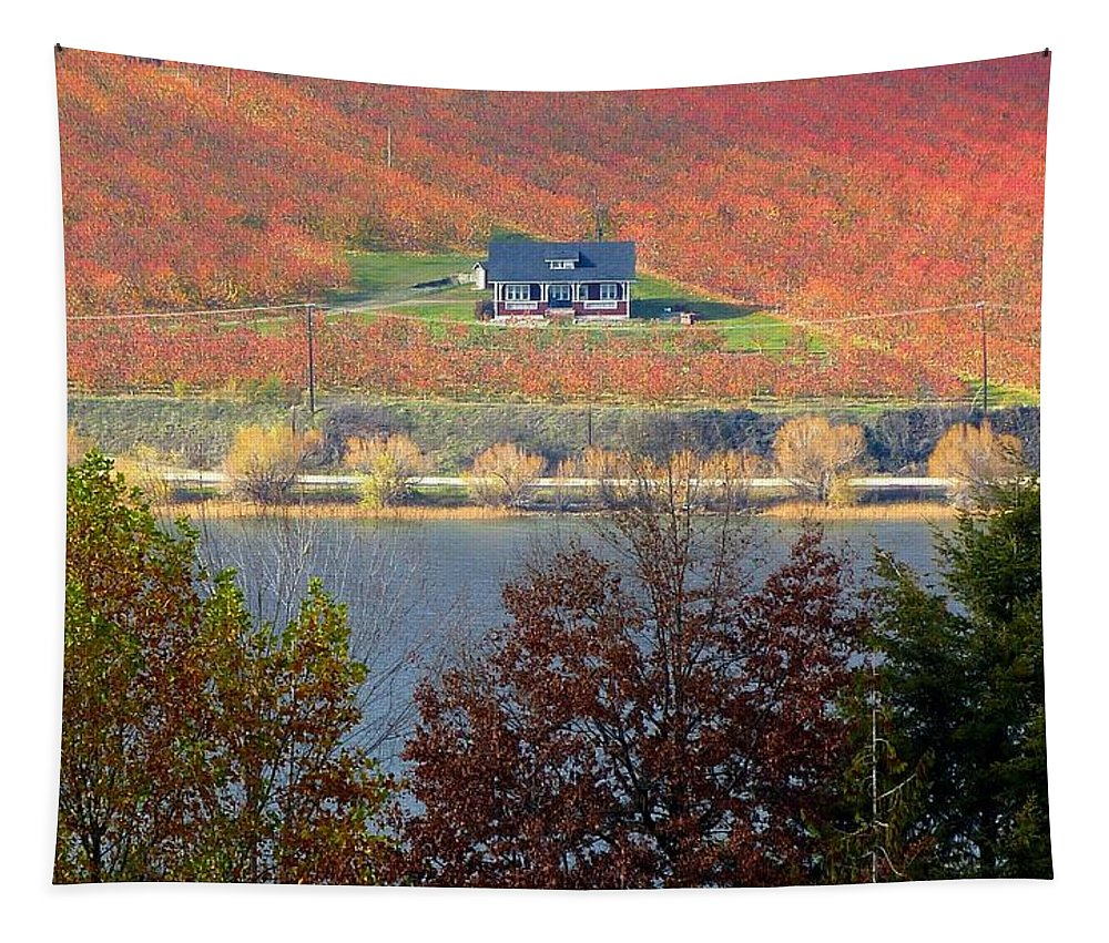 Orchards Tapestry featuring the photograph Days Of Autumn 26 by Will Borden
