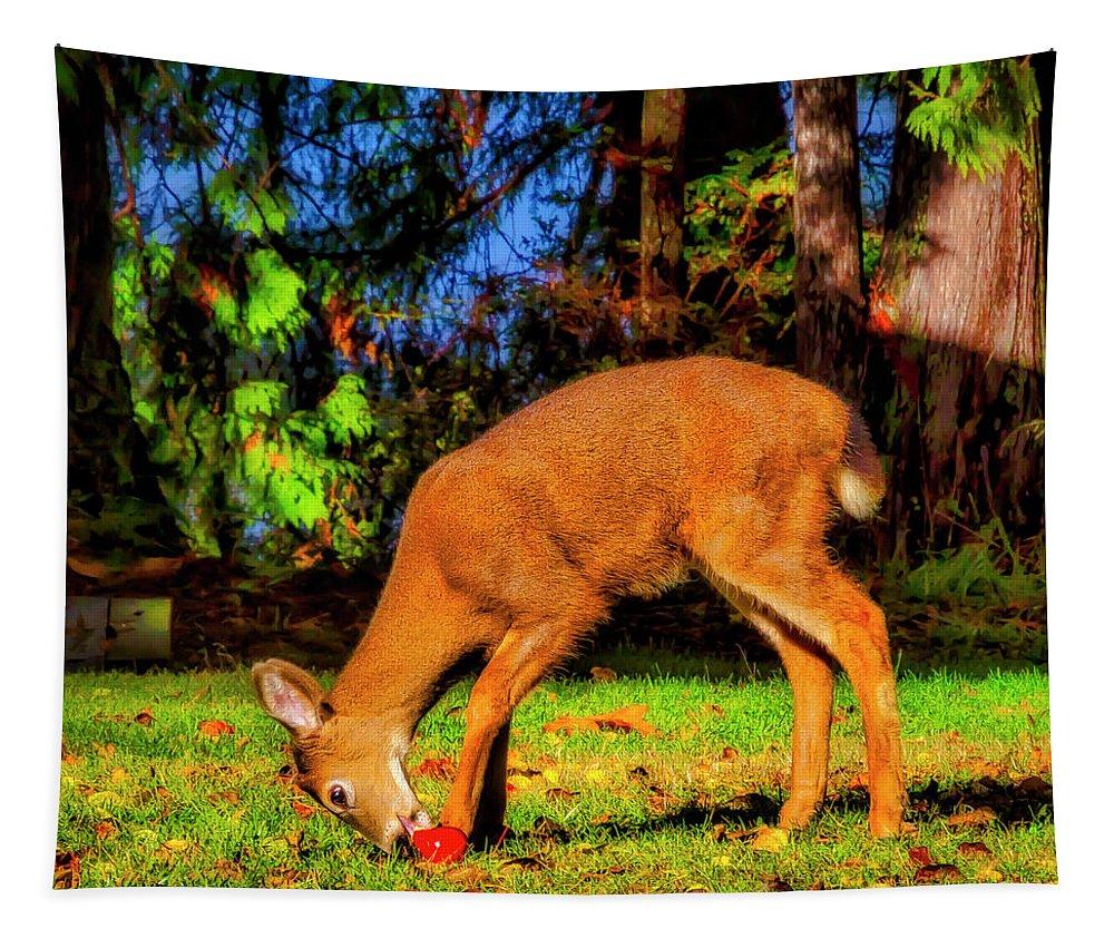 Deer Eating Apple Tapestry For Sale By Garry Gay