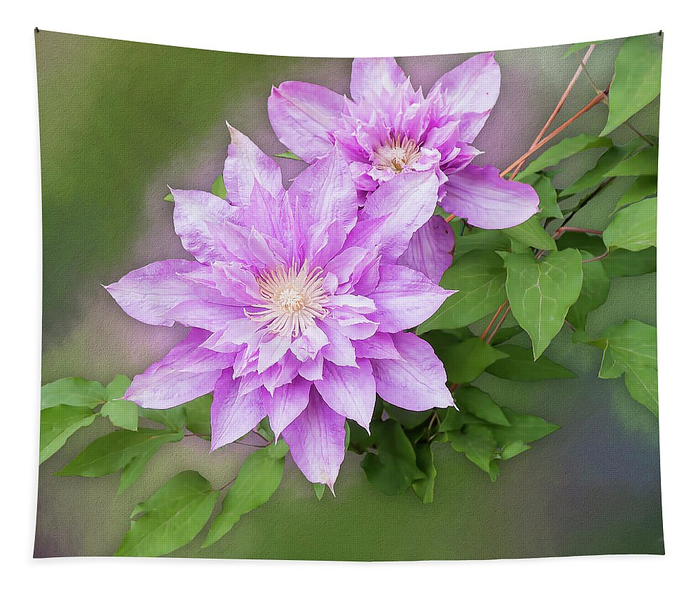 Isolated Tapestry featuring the photograph Double Clem by Leslie Montgomery