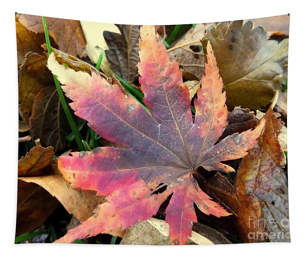 Autumn Tapestry featuring the photograph F2784 by Rae Lange