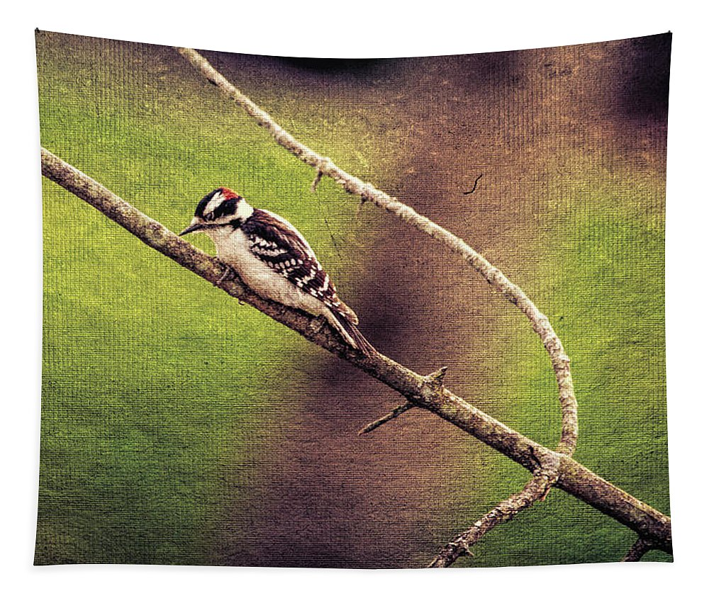 Tapestry featuring the digital art Faded Canvas Woodpecker by Max Huber