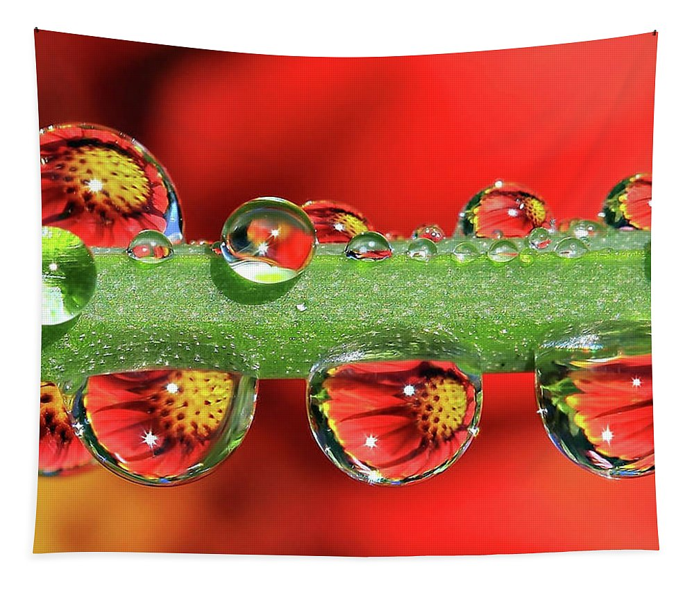 Water Drops Tapestry featuring the photograph Firey Drops by Gary Yost