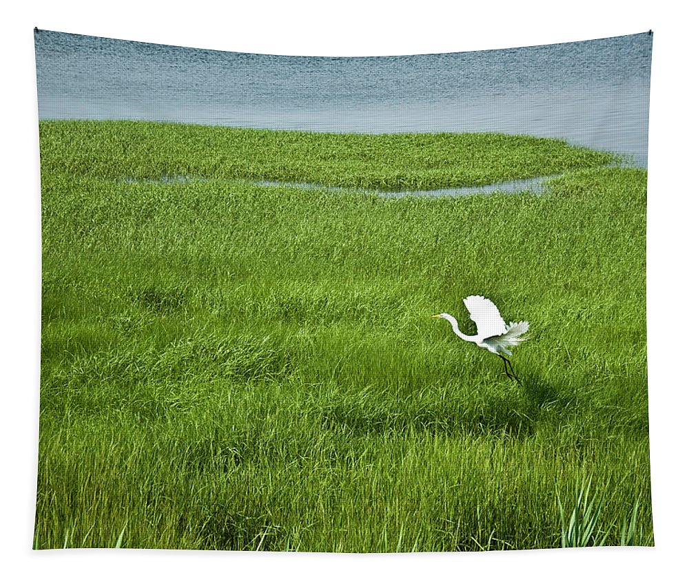 White Heron Tapestry featuring the photograph Salt Marsh Flight by Kirsten O'Leary