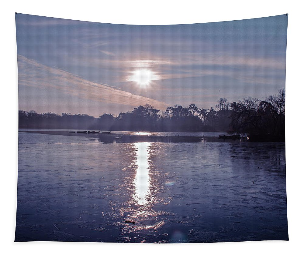 Lake Tapestry featuring the photograph Frozen by Claire Lowe