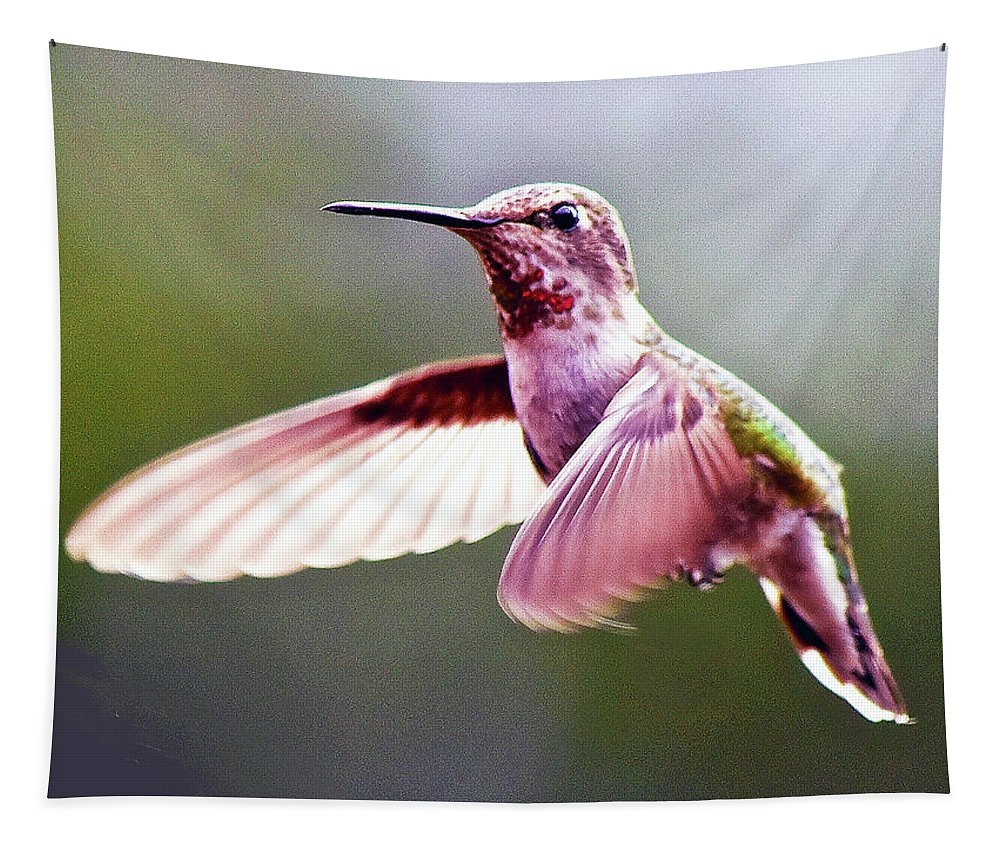 Nature Tapestry featuring the photograph Grace In Motion by Susan Burger
