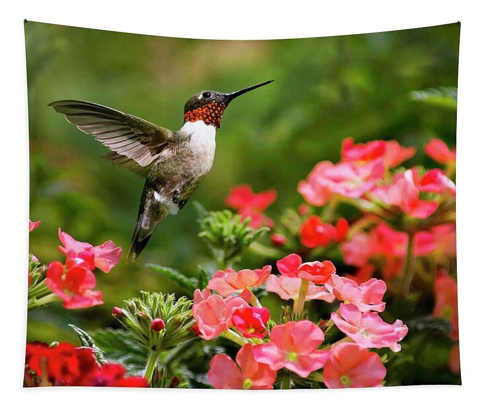 Hummingbird Tapestry featuring the photograph Graceful Garden Jewel by Christina Rollo