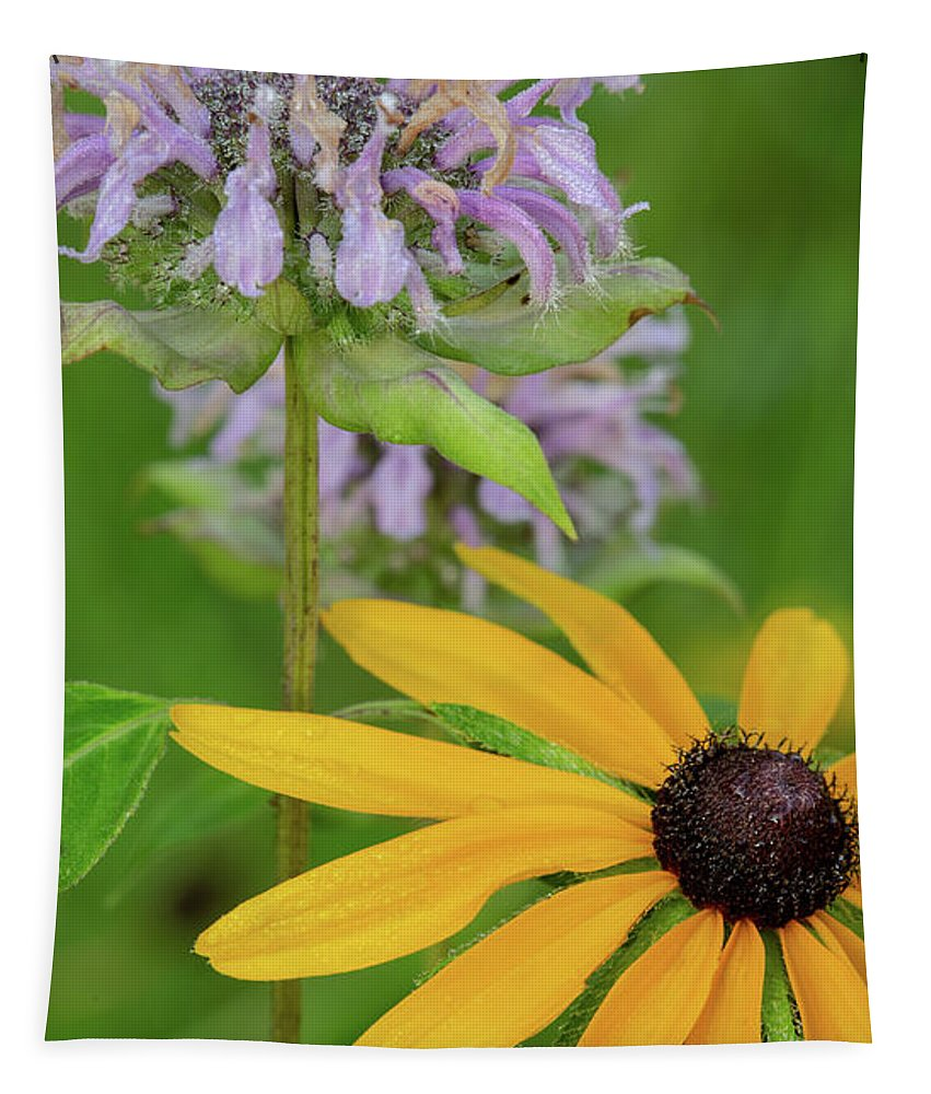 Harmony In Nature Tapestry featuring the photograph Harmony In Nature by Dale Kincaid