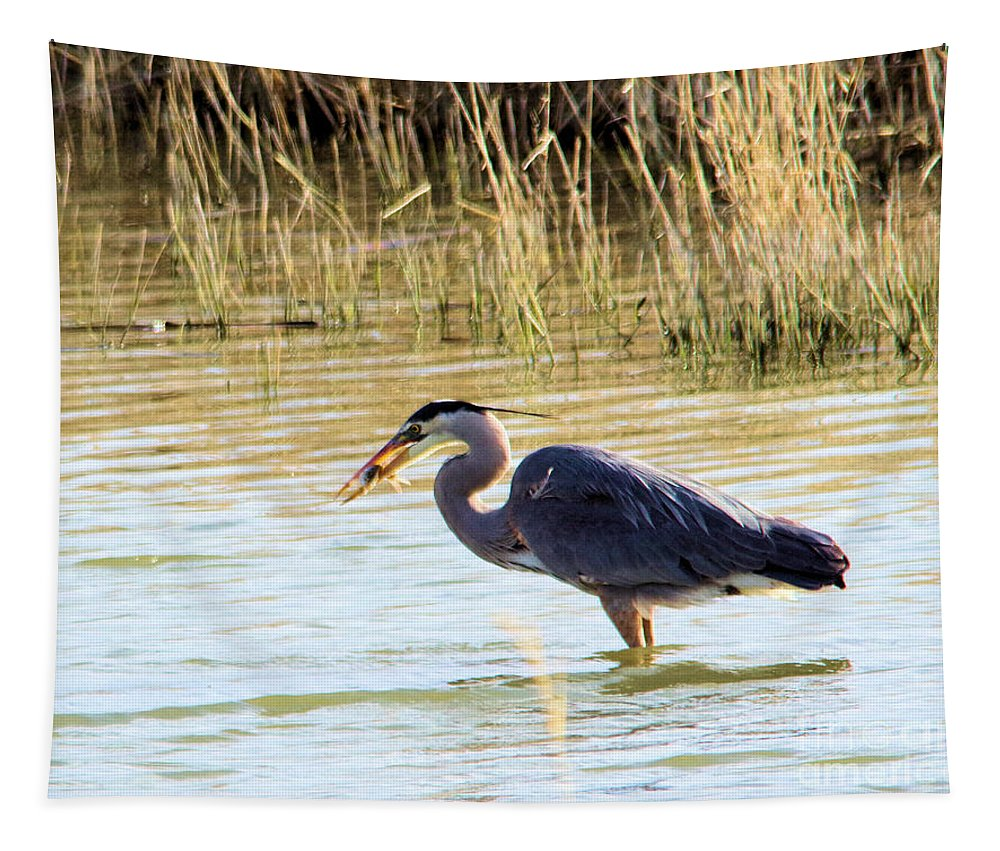 Bird Tapestry featuring the photograph Heron Capturing A Fish by Jeff Swan