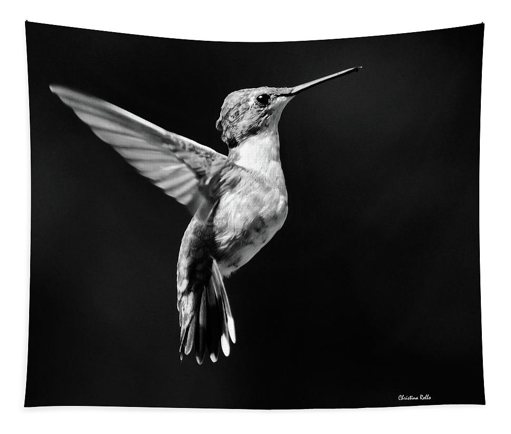 Hummingbird Tapestry featuring the photograph Hummingbird Wings Up Square Bw by Christina Rollo
