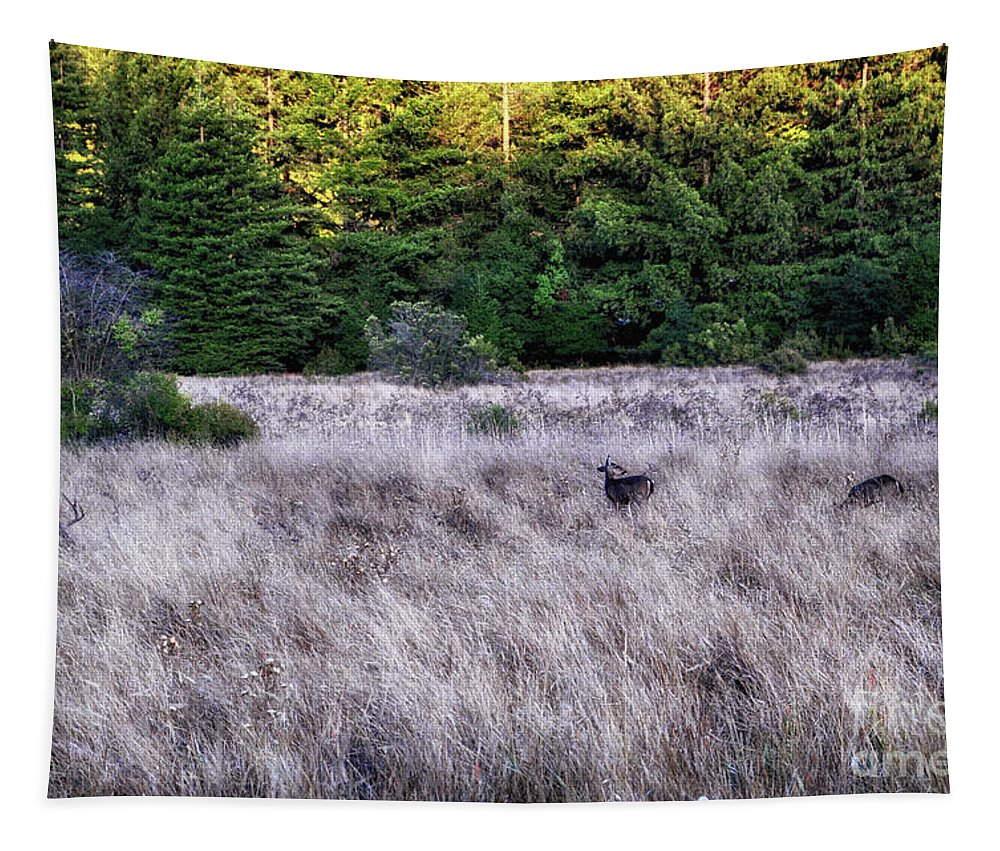 Landscape Tapestry featuring the photograph I Spy 4 Deer by Julia Telligman