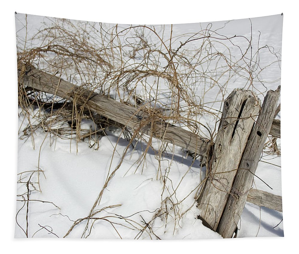 Landscape Tapestry featuring the photograph Austere Beauty by Kirsten O'Leary
