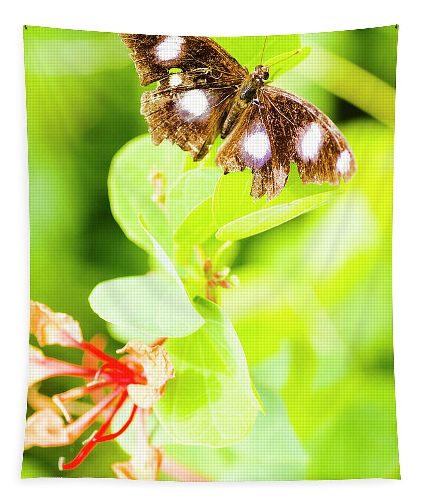 Animal Tapestry featuring the photograph Jungle Bug by Jorgo Photography - Wall Art Gallery