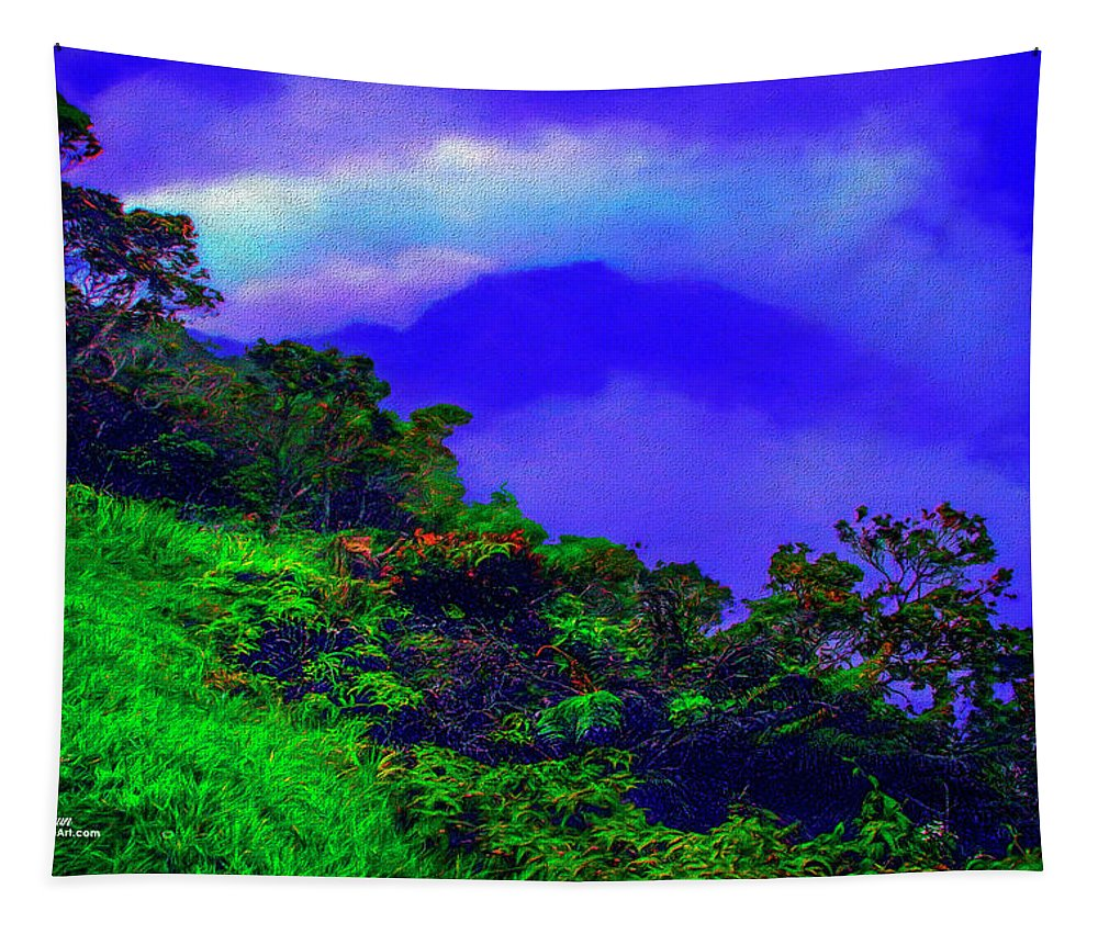 Hawaii Tapestry featuring the photograph Kauai by Mike Braun