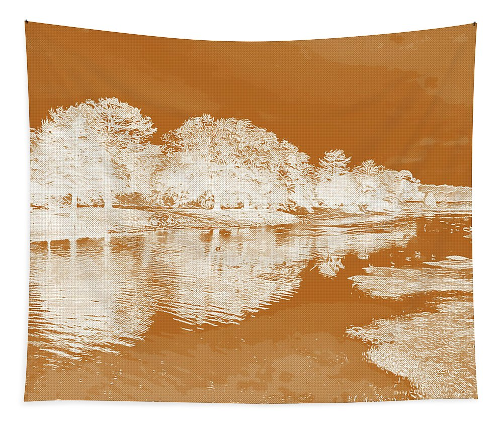 Langan Park Tapestry featuring the digital art Lake Reflections In Brown by Marian Bell