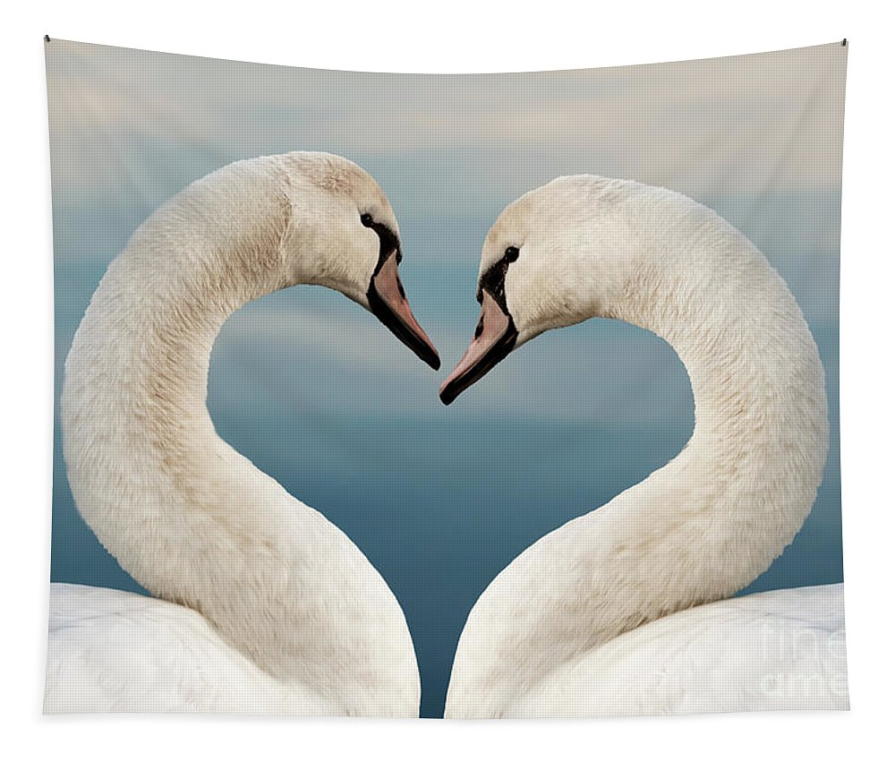 Love Tapestry featuring the photograph Love Swans by Delphimages Photo Creations