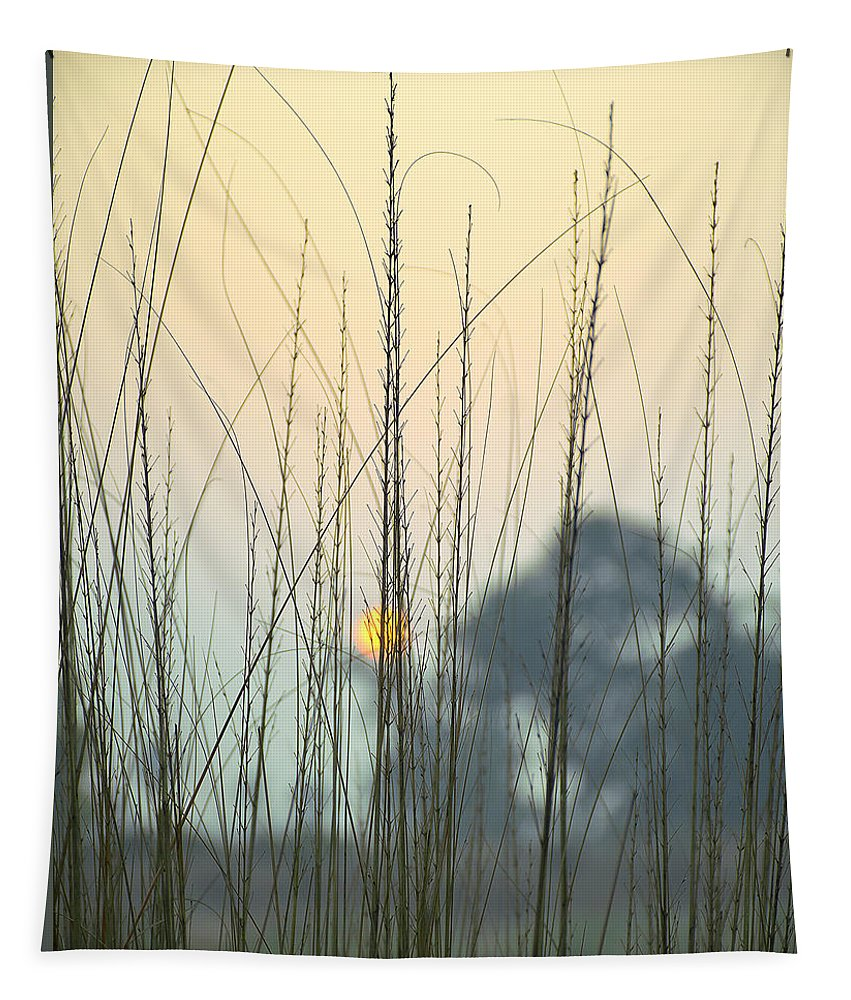 Landscape Tapestry featuring the photograph morning Star by Ravi Bhardwaj