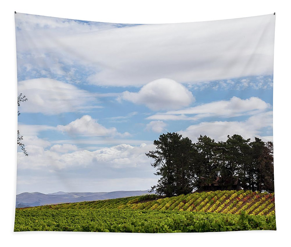 Napa Tapestry featuring the photograph Napa Valley by Penny Meyers