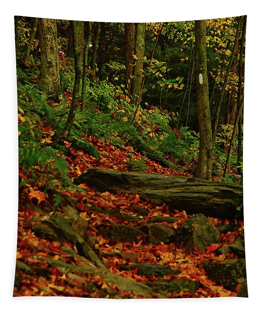 Northside Of Mount Greylock At Tapestry featuring the photograph Northside Of Mount Greylock At by Raymond Salani III