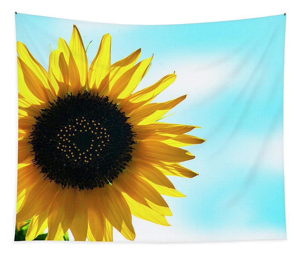 Sunflower Tapestry featuring the photograph Oh Happy Day by Annette Persinger