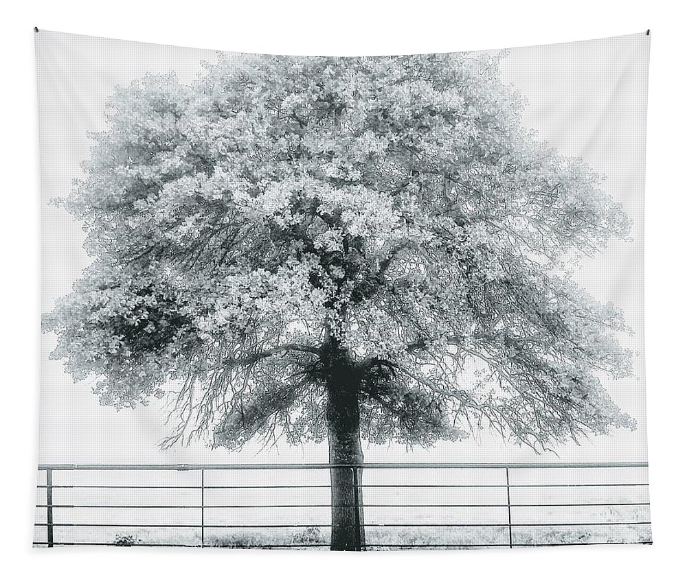 Black And White Tapestry featuring the photograph One Foggy Morning by Tammy Reynolds