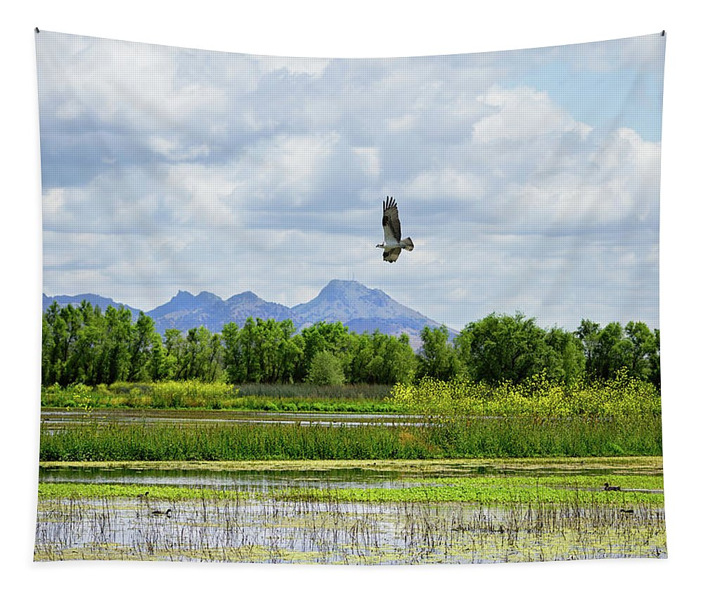 Sutter Buttes Tapestry featuring the photograph Osprey Over The Wetlands by Kathleen Bishop
