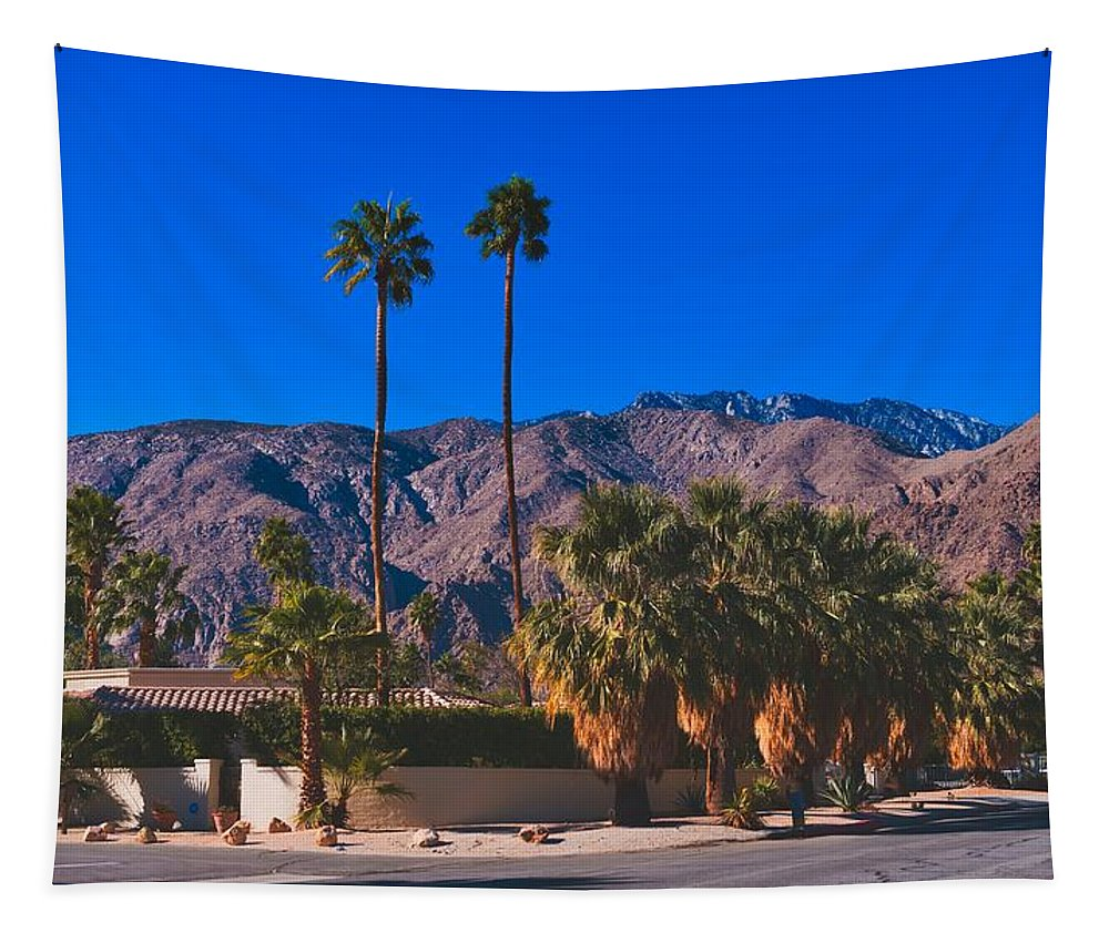 Palm Springs Tapestry featuring the photograph Palm Springs California by Mountain Dreams