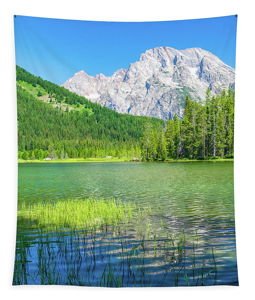 Grand Tetons Tapestry featuring the photograph Paradise by Aaron Geraud