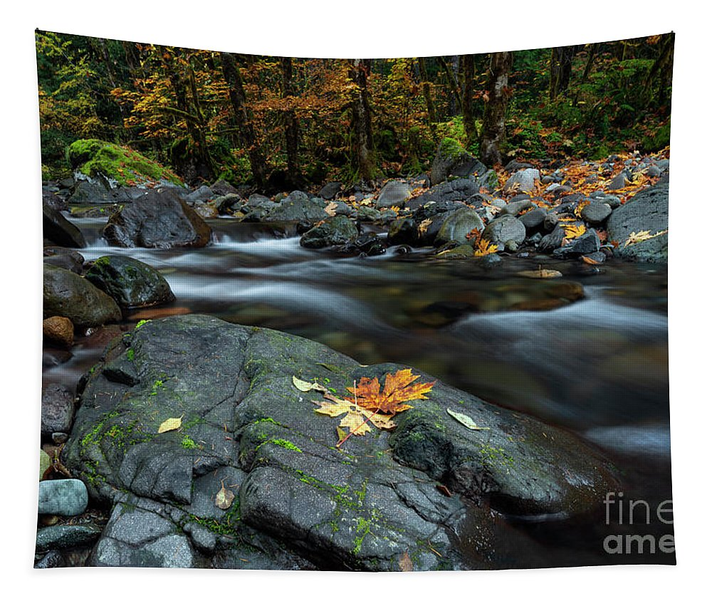 Leaves Tapestry featuring the photograph Pieces Of Autumn by Mike Dawson