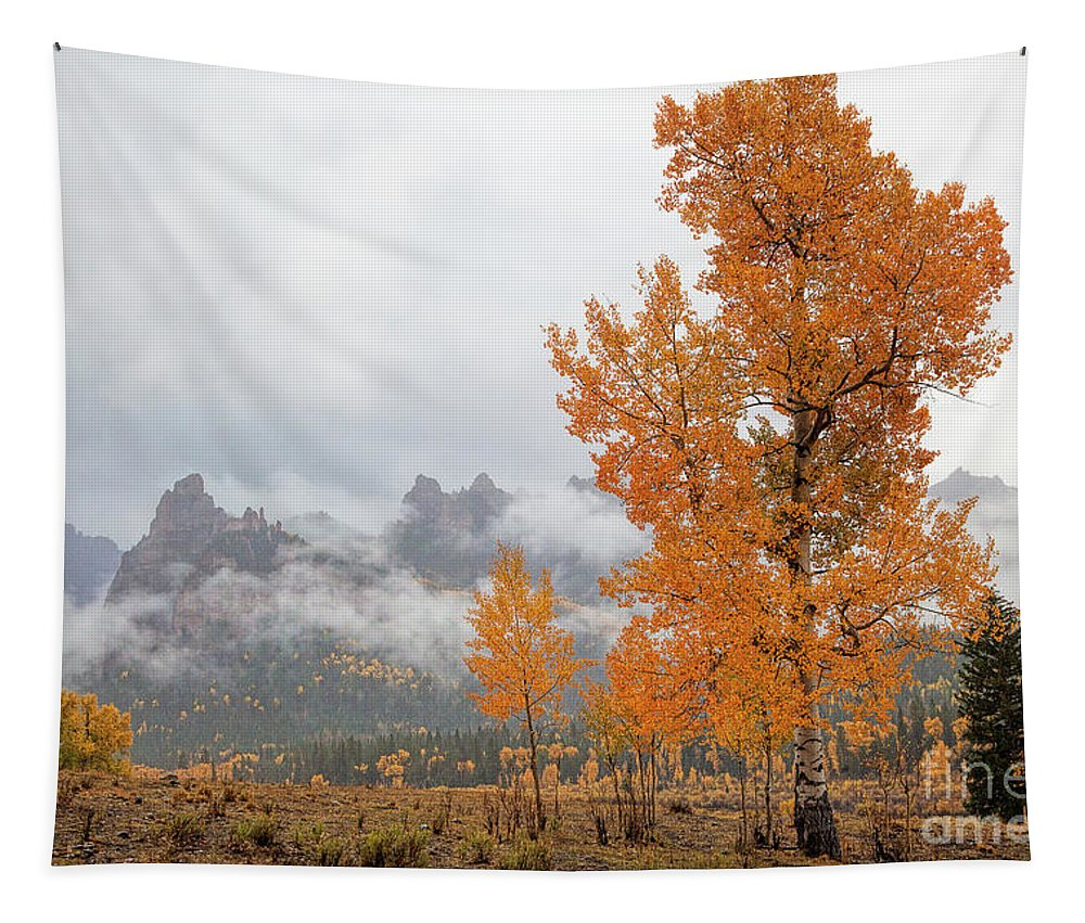 Aspen Tapestry featuring the photograph Pillar Of Fire by Jim Garrison