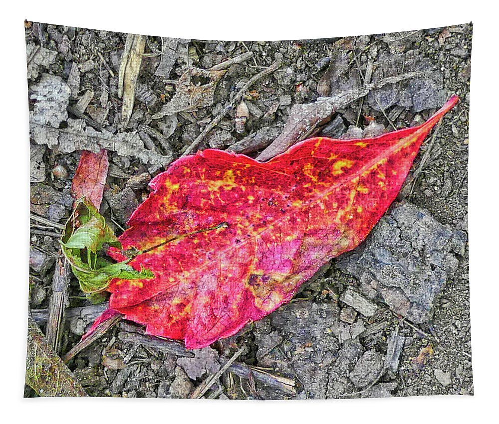 Leaf Tapestry featuring the photograph Red Leaf On Green's Hill by Scott Hufford