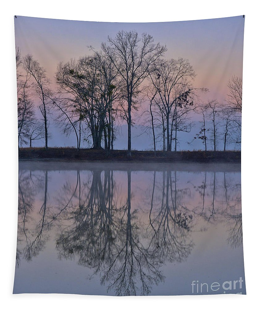 Alabama Tapestry featuring the photograph Reflections On The Lake by Ken Johnson