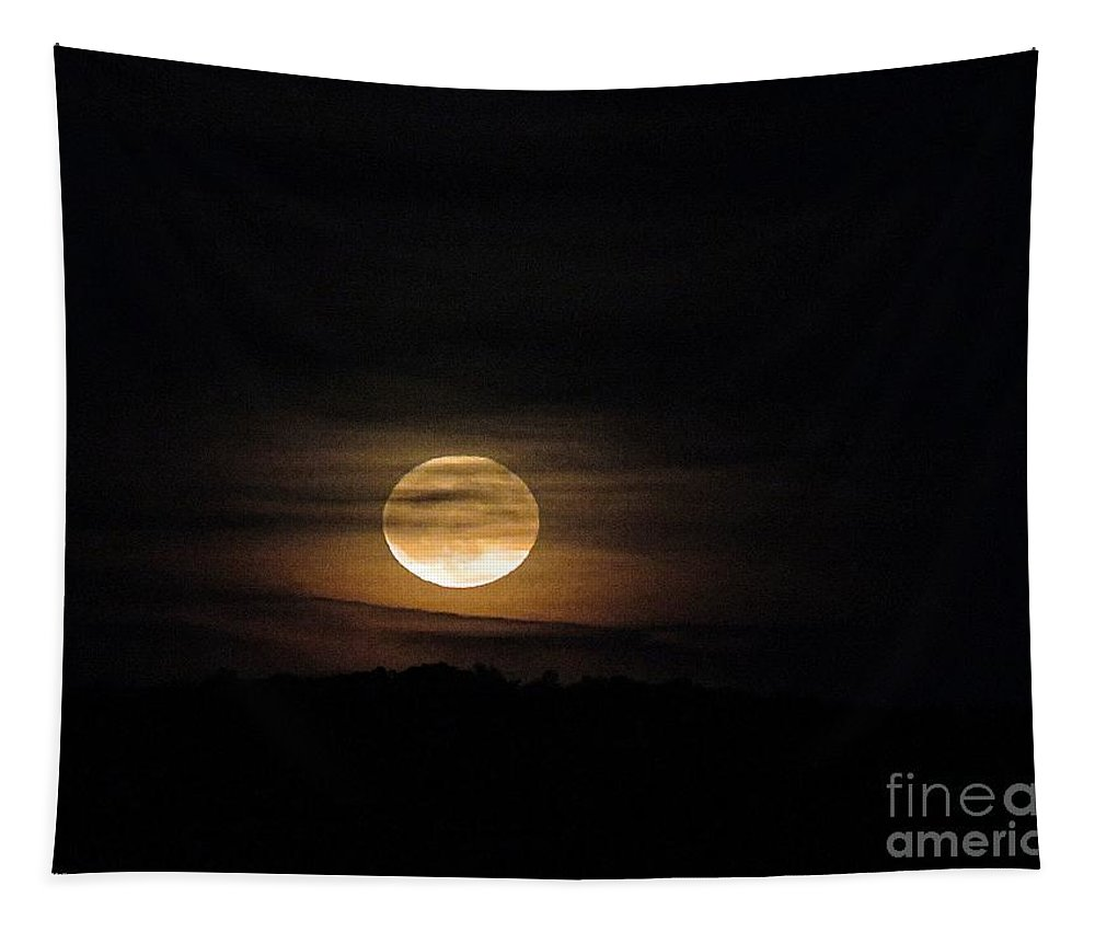 Moon Tapestry featuring the photograph Rising October Moon by Bobbie Moller