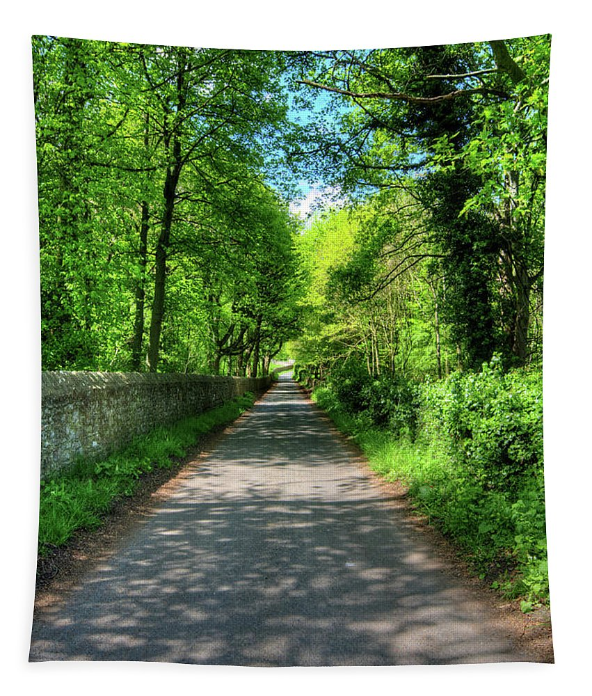 Easby Yorkshire Tapestry featuring the mixed media Road To Easby by Smart Aviation