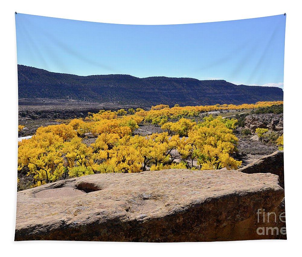 Desert Tapestry featuring the photograph Sandstone Above Golden River Desert Landscape by Brenda Landdeck