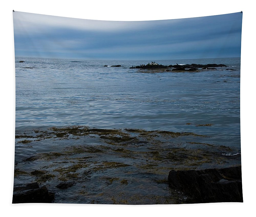 Seascape Tapestry featuring the photograph Seascape #2 by Kirsten O'Leary
