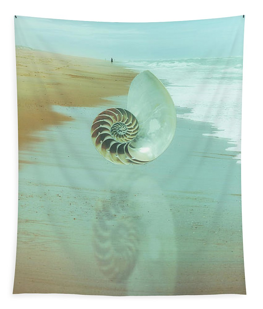 Clouds Tapestry featuring the photograph Shell Reflections In The Sand In The Soft Dawn by Debra and Dave Vanderlaan